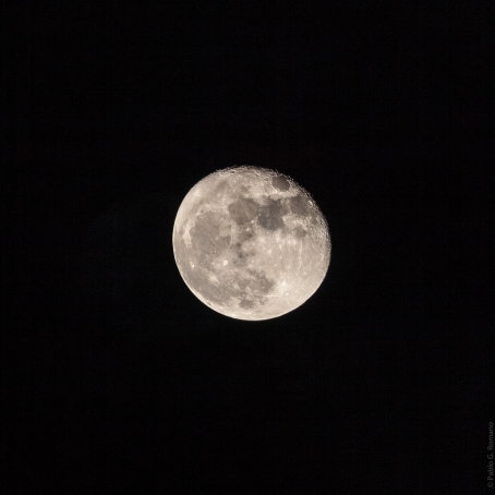 Luna llena 11-2015 -1